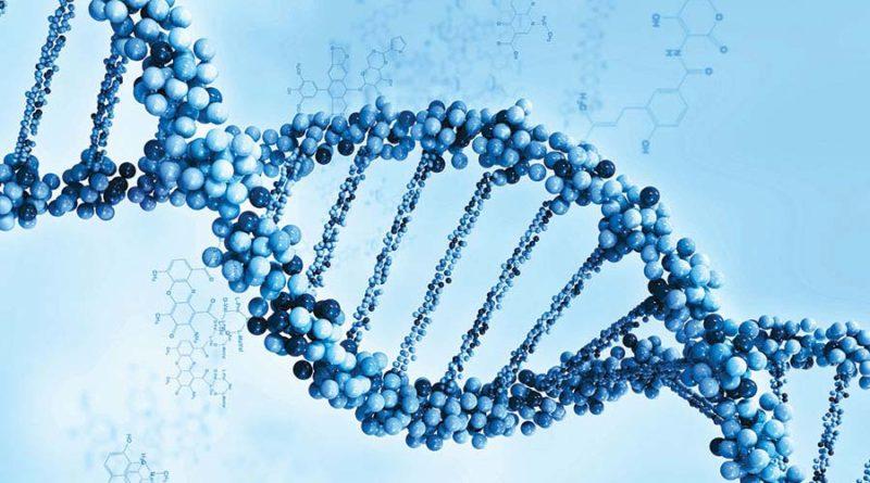 В-чем-разница-между-геном-и-аллелем