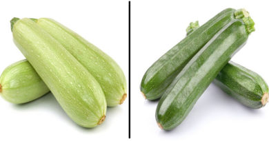 В чем разница между кабачком и цукини?