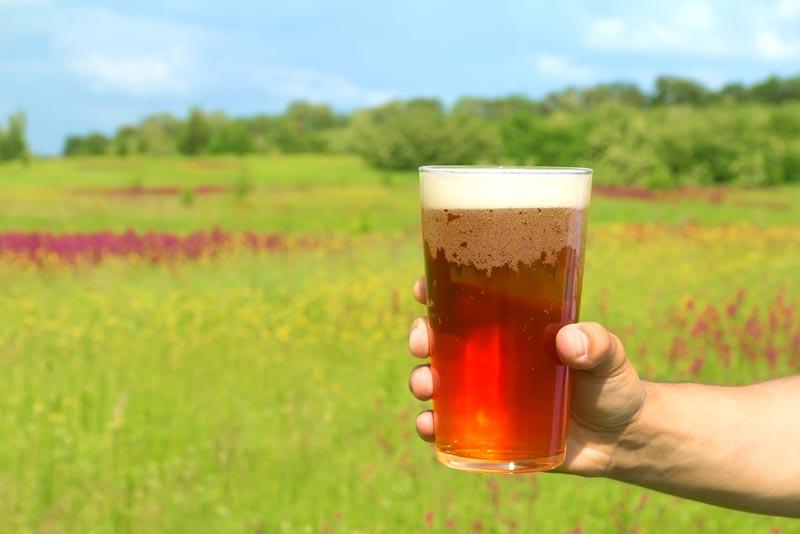 нефильтрованное-пиво