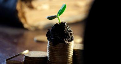 разница между доходом и прибылью