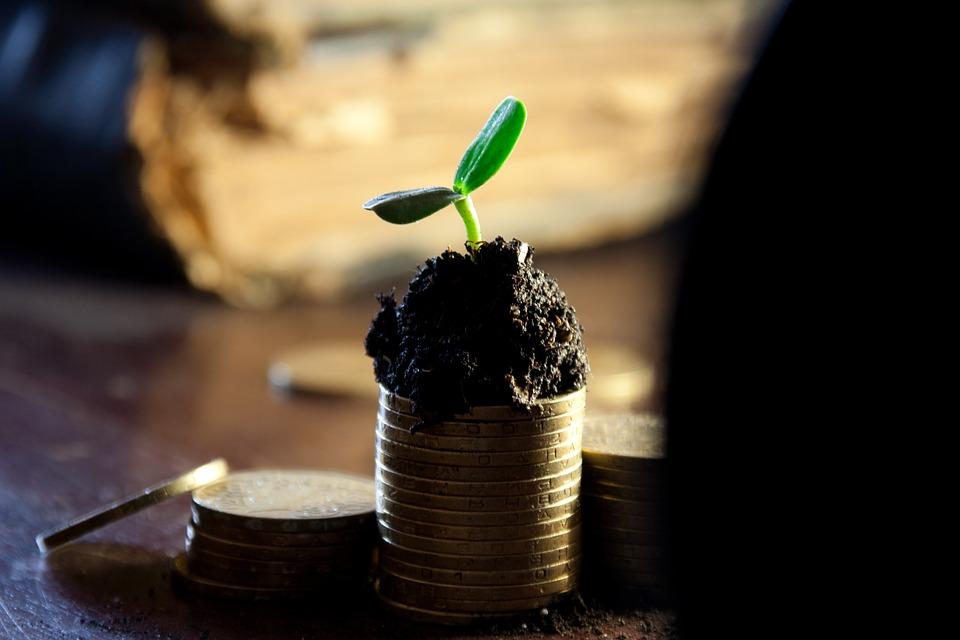 Чем отличается доход от прибыли