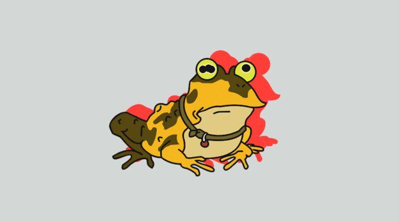В чем разница между лягушкой и жабой