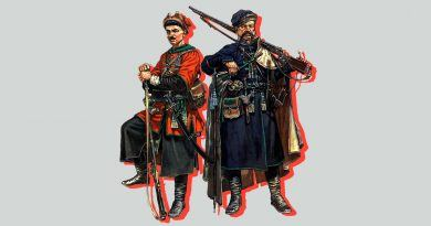 Донские и кубанские казаки